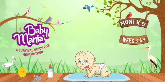 Your Babys Growth and Development : Week - 3 & Week - 4 : Month - 5