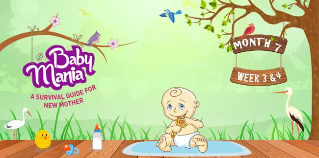Your Babys Growth and Development : Week - 3 & Week - 4 : Month - 7
