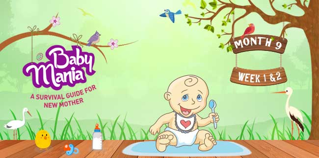 Your Babys Growth and Development : Week - 1 & Week - 2 : Month - 9