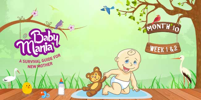 Your Babys Growth and Development : Week - 1 & Week - 2 : Month - 10