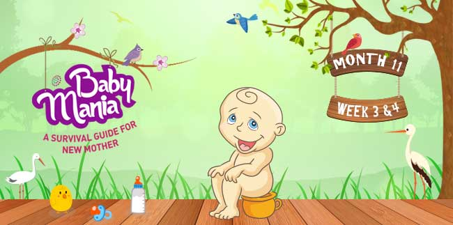 Your Babys Growth and Development : Week - 3 & Week - 4 : Month - 11