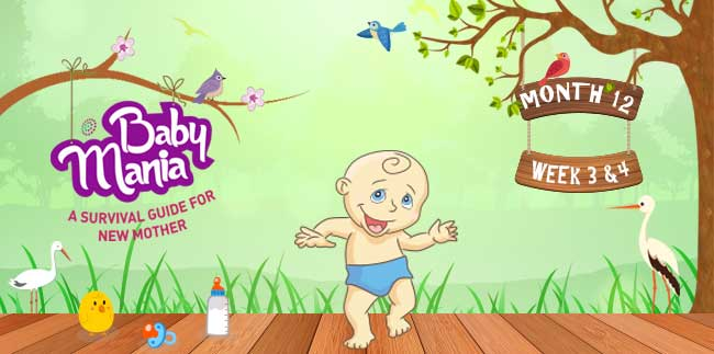 Your Babys Growth and Development : Week - 3 & Week - 4 : Month - 12