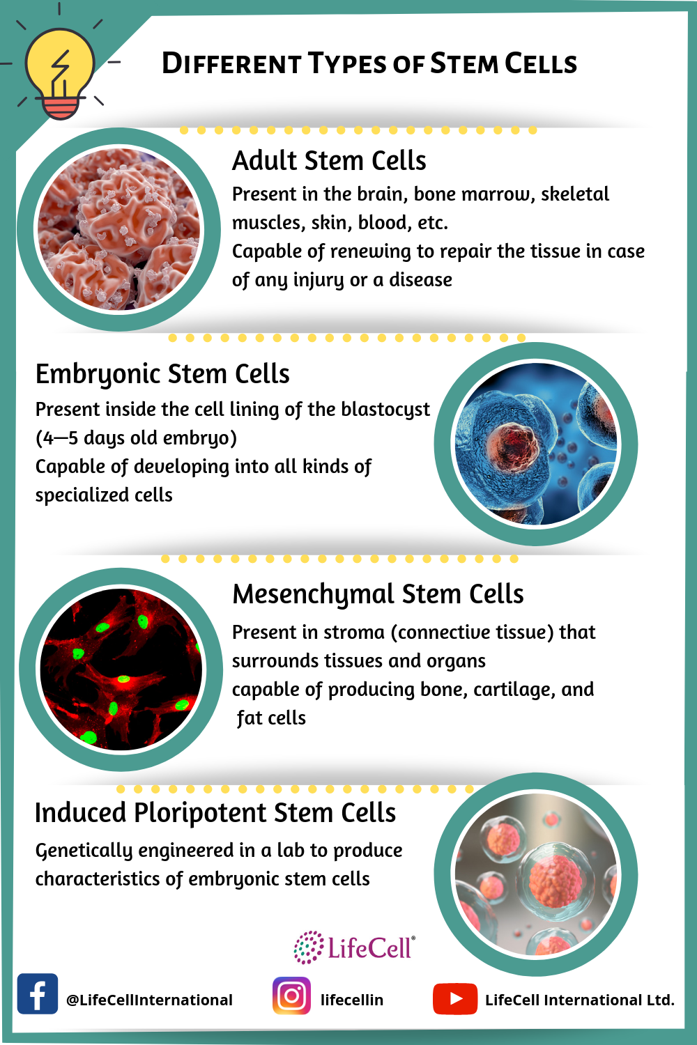 Different sources of stem cells