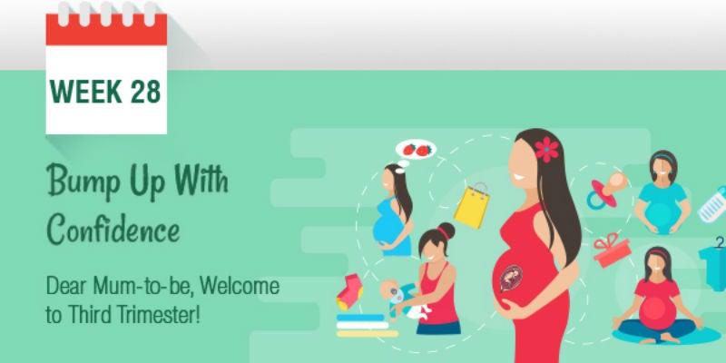 Pregnancy week by week, Pregnancy Care, Tips, Guide  Week 28, Month 7