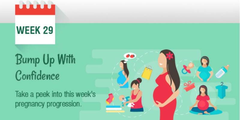 pregnancy week by week, Pregnancy Care, Tips, Guide  Week 29, Month 7