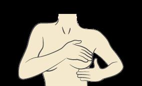breast milk nutrition test
