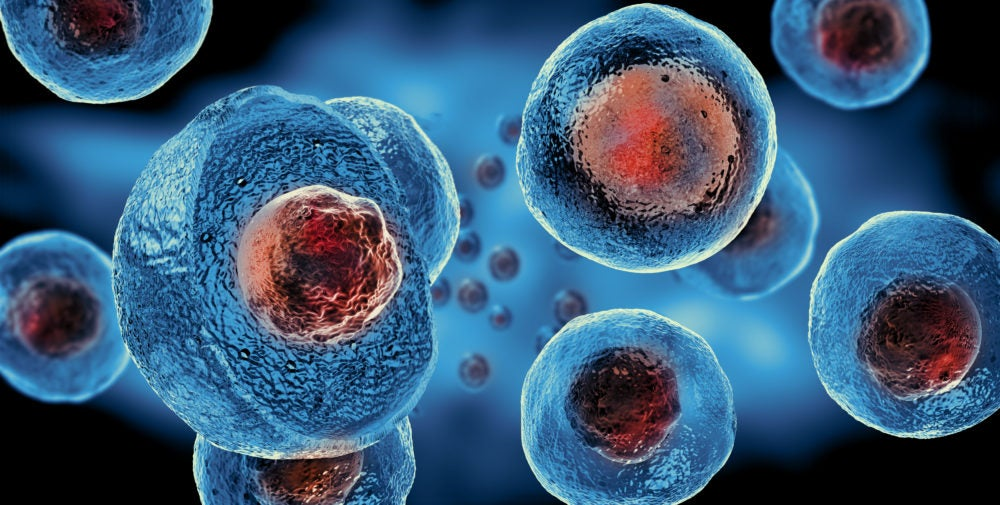 Stem Cell Banking